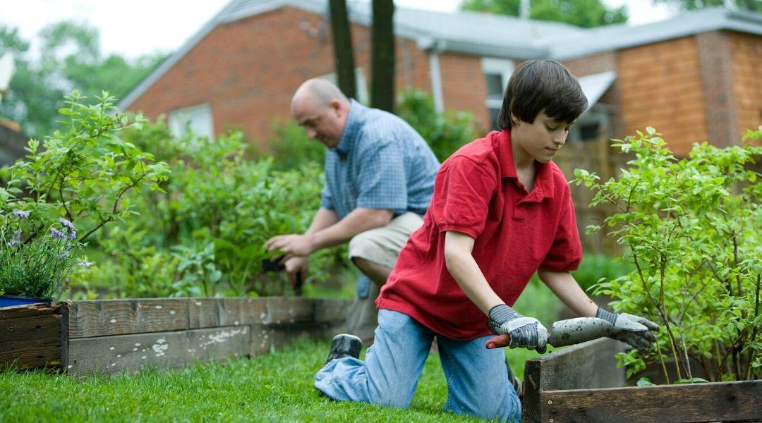 A magaságyás előnyei közé tartozik, hogy nem számít az otthoni talajminőség.